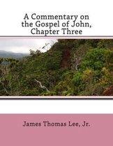Boek cover A Commentary on the Gospel of John, Chapter Three van Mr James Thomas Lee Jr