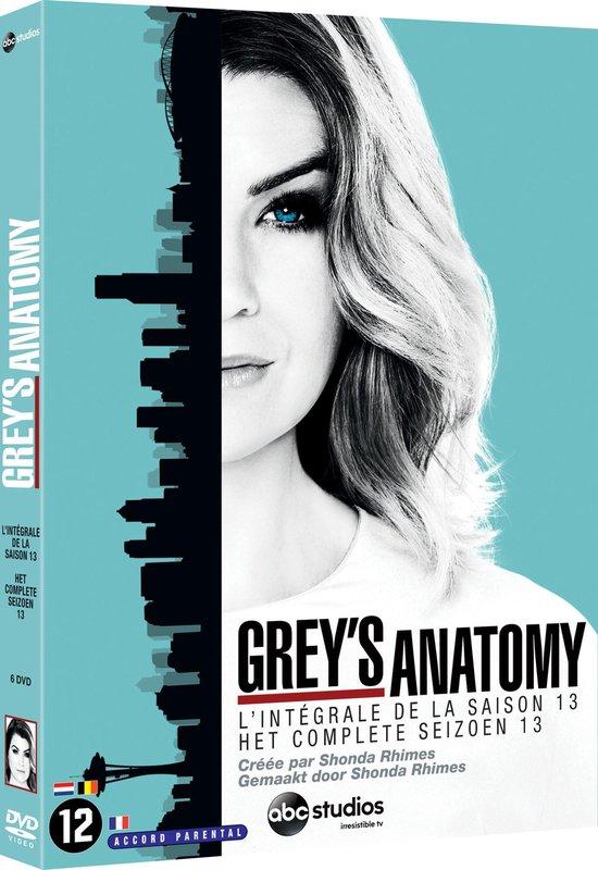 Grey's Anatomy - Seizoen 13 - Tv Series