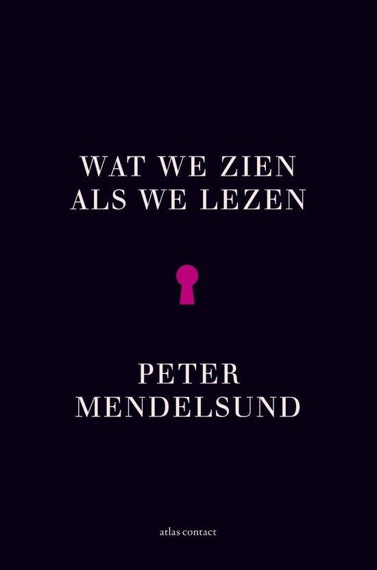 Wat we zien als we lezen - Peter Mendelsund  
