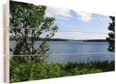 Uitzicht op St Brides Bay bij het Nationaal Park Pembrokeshire Coast Vurenhout met planken 40x20 cm - Foto print op Hout (Wanddecoratie)