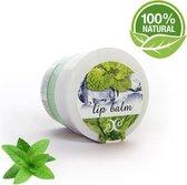 Lippen Balsem Mint 100% Natural - Hydrateert, Voedt & Verzorgt - 30ml