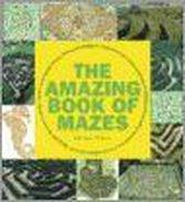 Amazing Book of Mazes