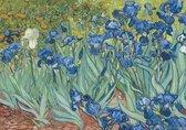 Vincent van Gogh irissen-bloemen Luxe kunst poster 50x70cm.