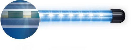 Novolux Led Blue 40