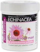 HERB EXTRACT® Regeneratieve Kruidenbalsem met Echinacea Extract voor Droge en Beschadigde Huid - 125ml