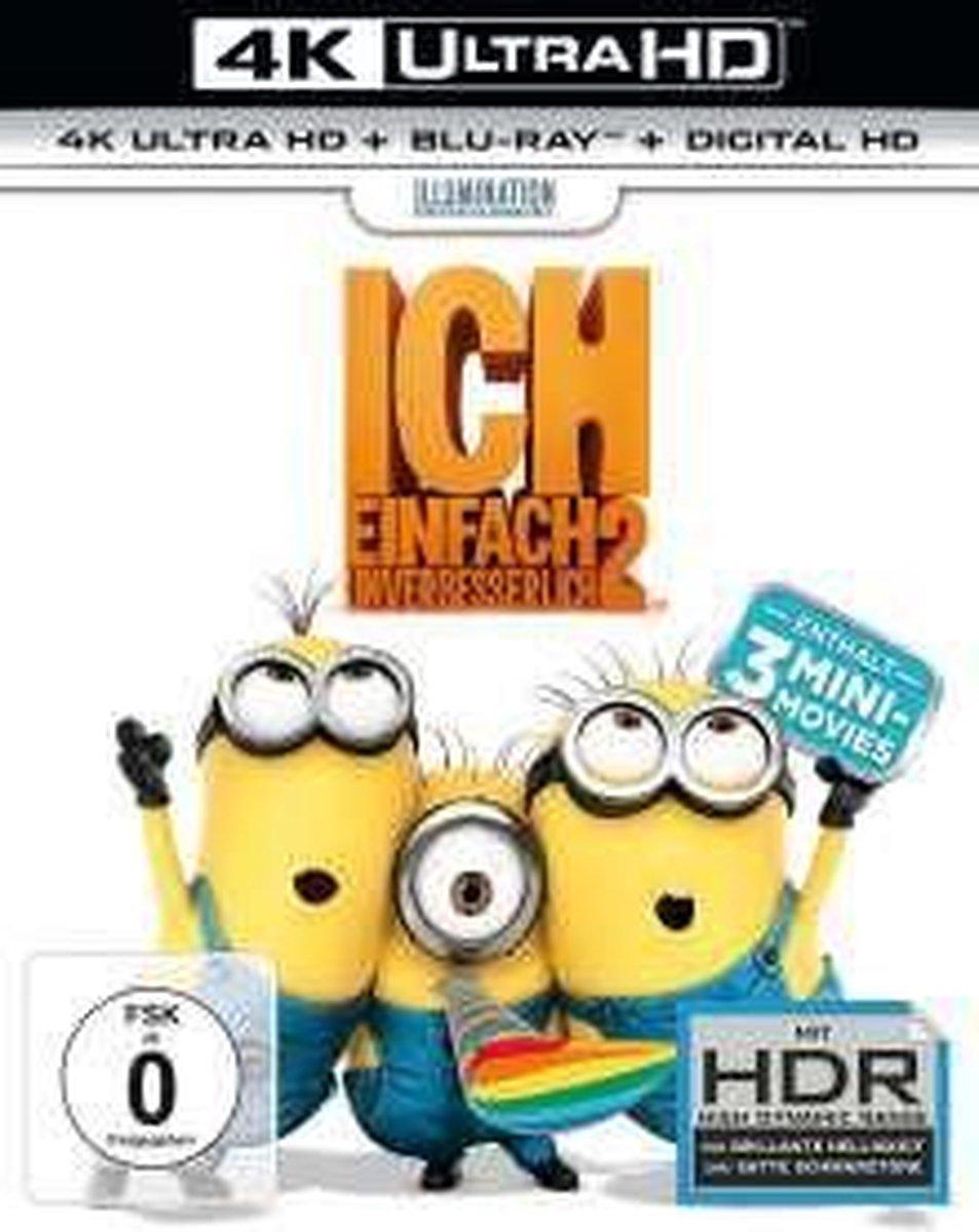 Despicable Me 2 (2013) (Ultra HD Blu-ray & Blu-ray)-