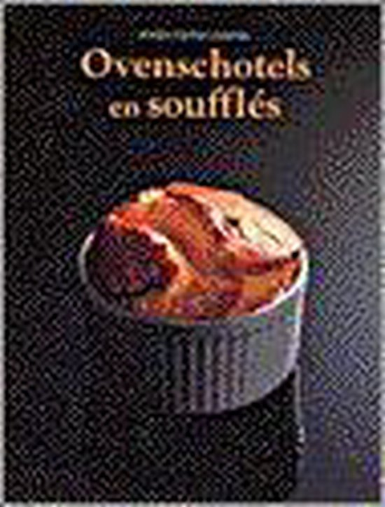 Ovenschotels En Souffles - Barbara Mayr |