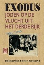 Boek cover Exodus van Deborah Dwork