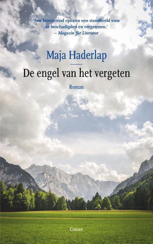 De engel van het vergeten - Maja Haderlap | Fthsonline.com