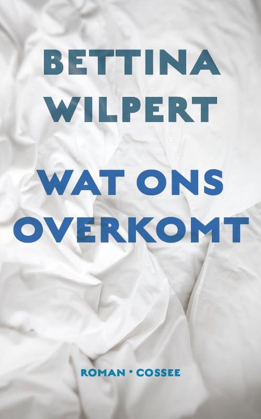 Wat ons overkomt - Bettina Wilpert pdf epub