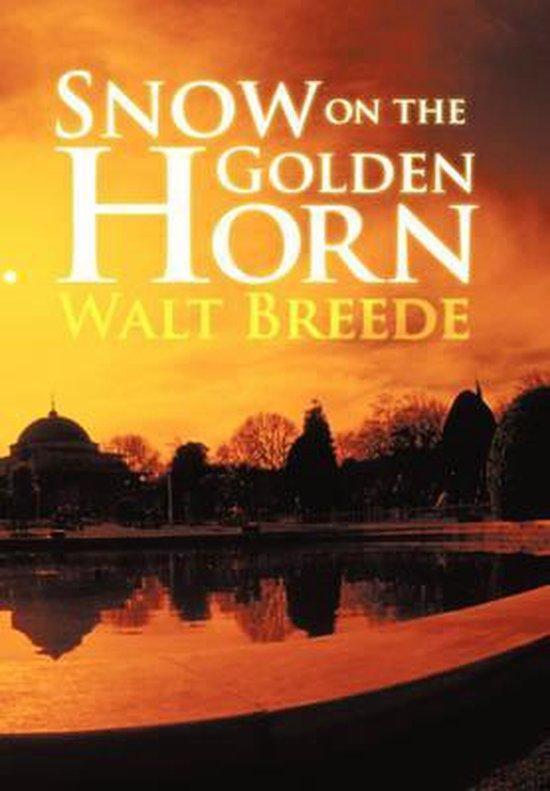 Snow on the Golden Horn