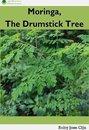 Moringa, the Drumstick Tree