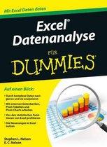 Excel Datenanalyse fur Dummies