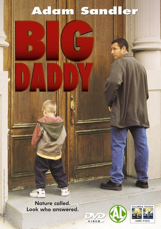Cover van de film 'Big Daddy'