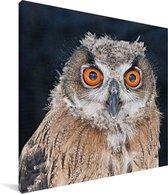 Close-up van een Ruigpootuil Canvas 20x20 cm - klein - Foto print op Canvas schilderij (Wanddecoratie woonkamer / slaapkamer)