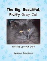 The Big, Beautiful, Fluffy Gray Cat