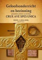 Geloofsonderricht en bezinning - gebundelde artikelen van het blog crux ave spes unica