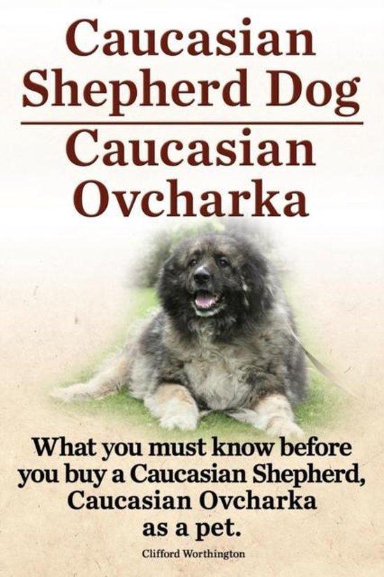 Caucasian Shepherd Dog. Caucasian Ovcharka. What You Must Know Before You Buy a Caucasian Shepherd Dog, Caucasian Ovcharka as a Pet.