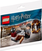 LEGO Harry Potter Harry's Reis naar Zweinstein (Polybag) - 30407