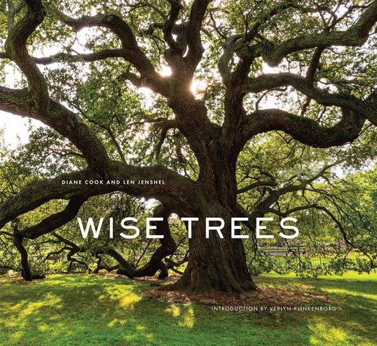 Boek cover Wise Trees van Diane Cook (Hardcover)