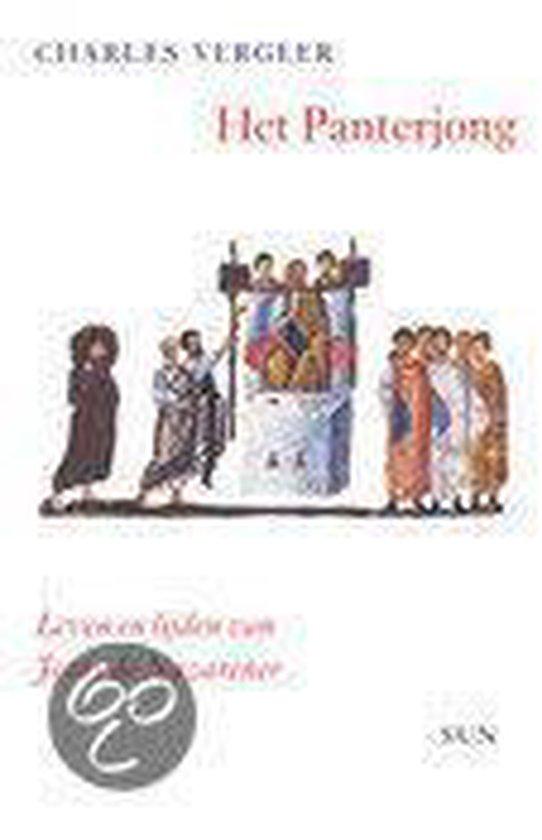 Cover van het boek 'Het panterjong'
