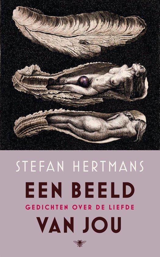 Een beeld van jou - Stefan Hertmans |