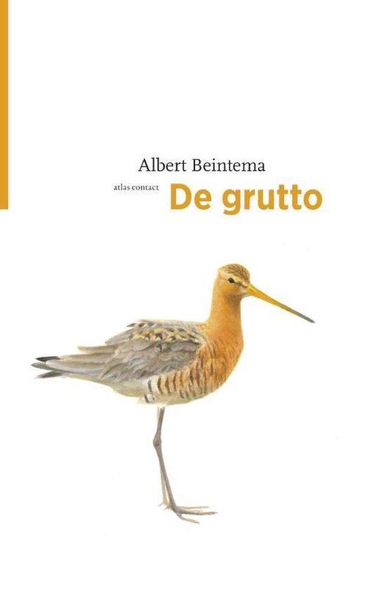 De vogelserie - De grutto - Albert Beintema | Fthsonline.com