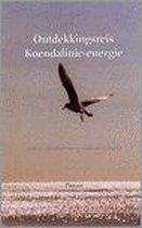 Ontdekkingsreis Koendalinie-energie