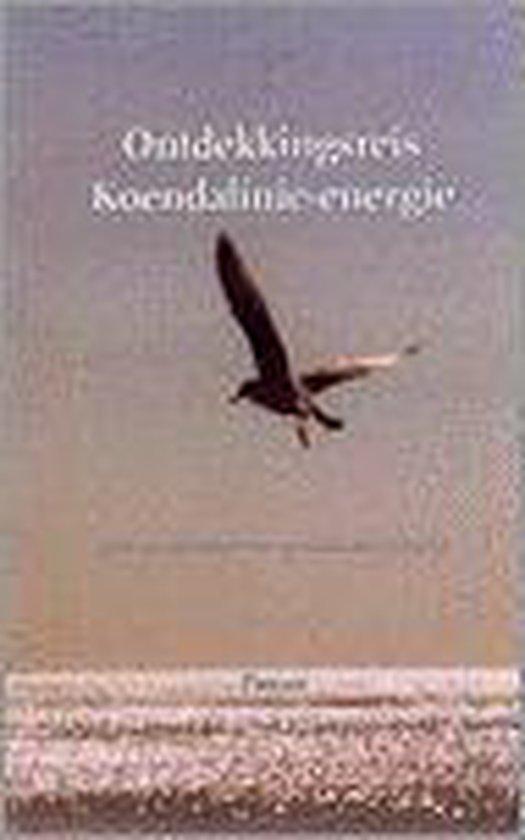 Ontdekkingsreis Koendalinie-energie - Pierjasi |