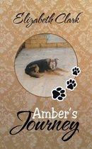 Amber's Journey
