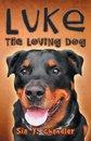 Luke the loving dog