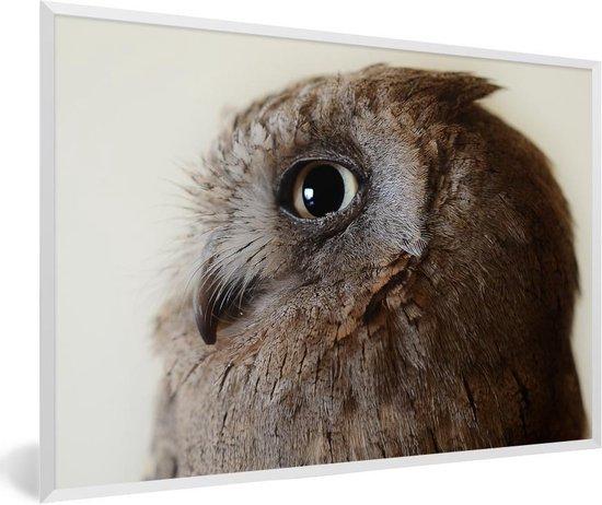 Foto in lijst - Dwergooruil van de zijkant fotolijst wit 60x40 cm - Poster in lijst (Wanddecoratie woonkamer / slaapkamer)