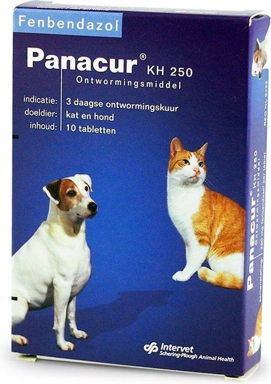 giardia hond panacur