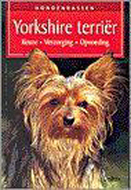 Hondenrassen 5. Yorkshire terriër - K. Biala-Gauss | Fthsonline.com