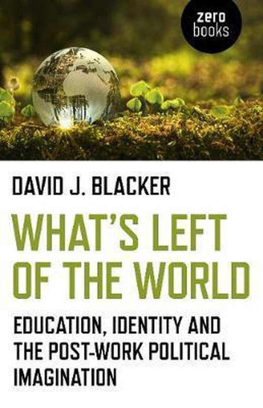 What`s Left of the World - Education, Identity and the Post-Work Political Imagination