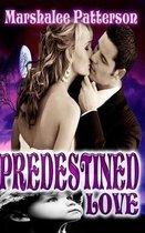 Predestined Love