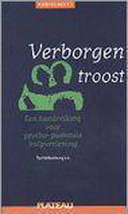 VERBORGEN TROOST - Ton Valkenburg pdf epub