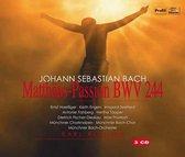 Bach: Matthaus-Passion Bwv 24