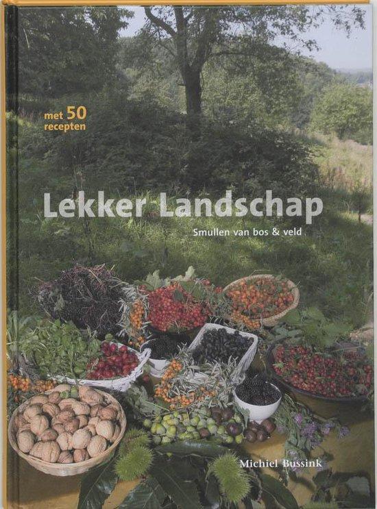 Lekker Landschap - Michiel Bussink pdf epub