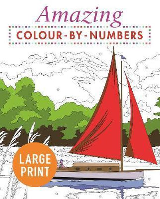 Amazing Colour-by-Numbers Large Print