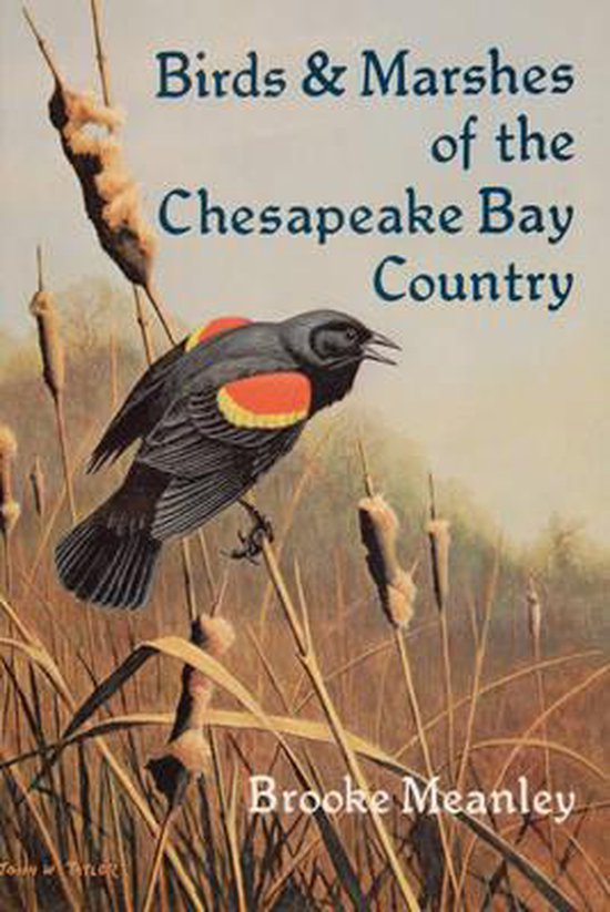Birds & Marshes of the Chesapeake Bay Country