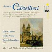 Wind Concertos Vol. 2