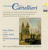 Wind Concertos Vol2