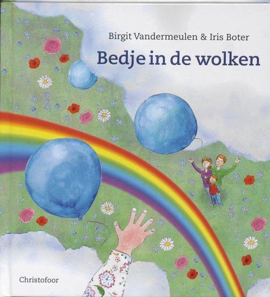Bedje in de wolken - Birgit Vandermeulen |