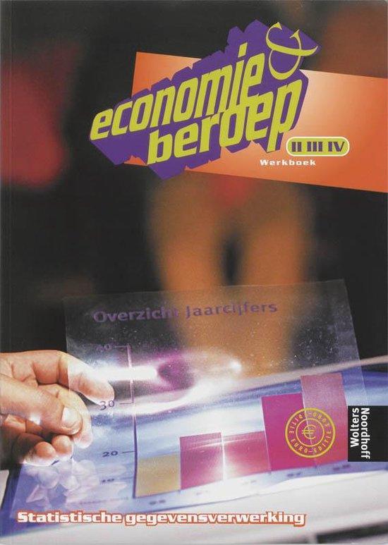 Werkboek Statistische gegevensverwerking niveau II/III/IV Economie & beroep - Hester Vermeulen | Fthsonline.com