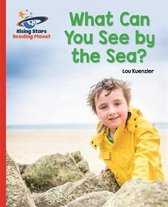 Reading Planet - What Can You See by the Sea? - Red B