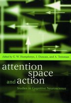 Attention, Space, and Action