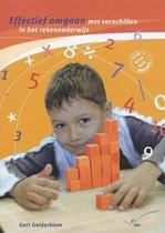 Effectief omgaan met verschillen in het rekenonderwijs