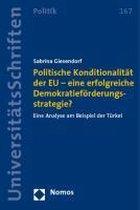 Politische Konditionalität der EU - eine erfolgreiche Demokratieförderungsstrategie?