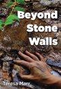 Omslag Beyond Stone Walls